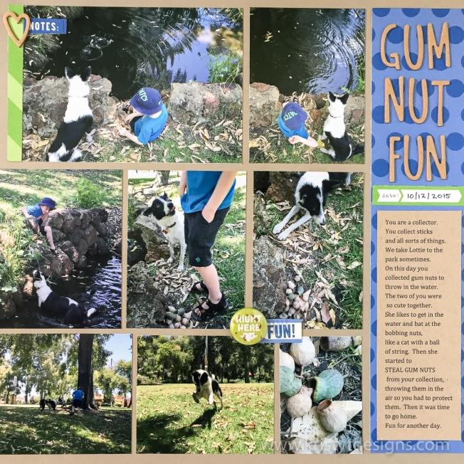 gum-nut